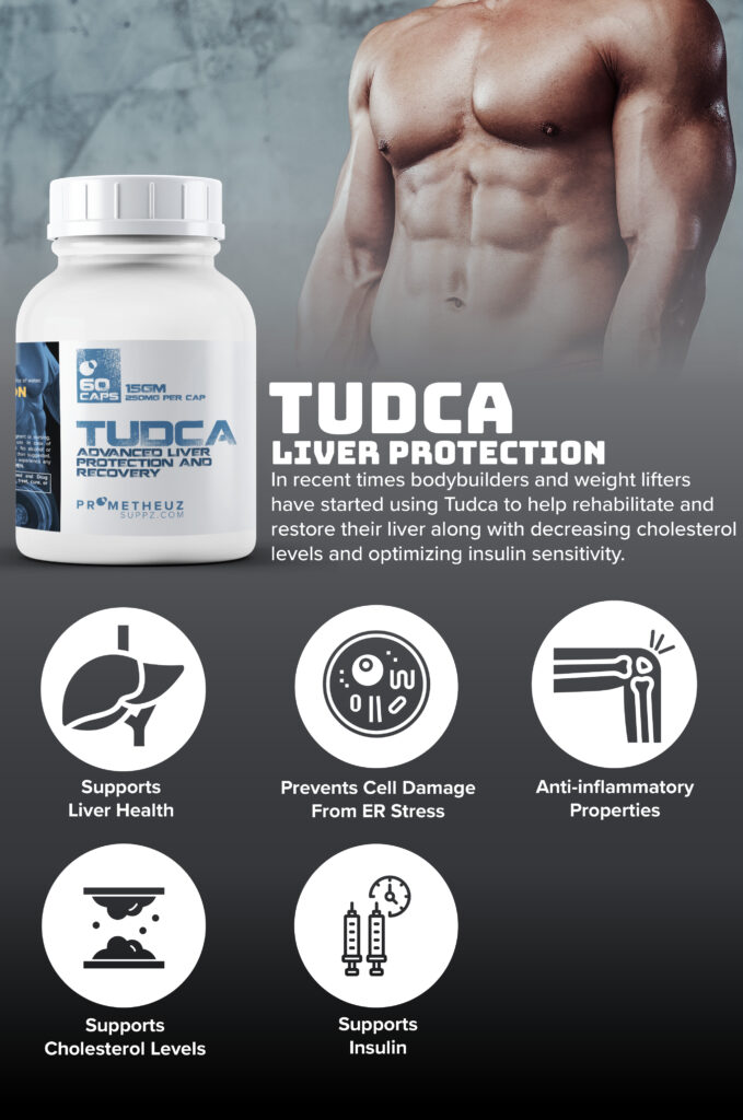 What does TUDCA do?