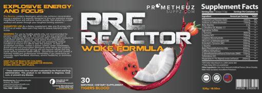 Pre Reactor